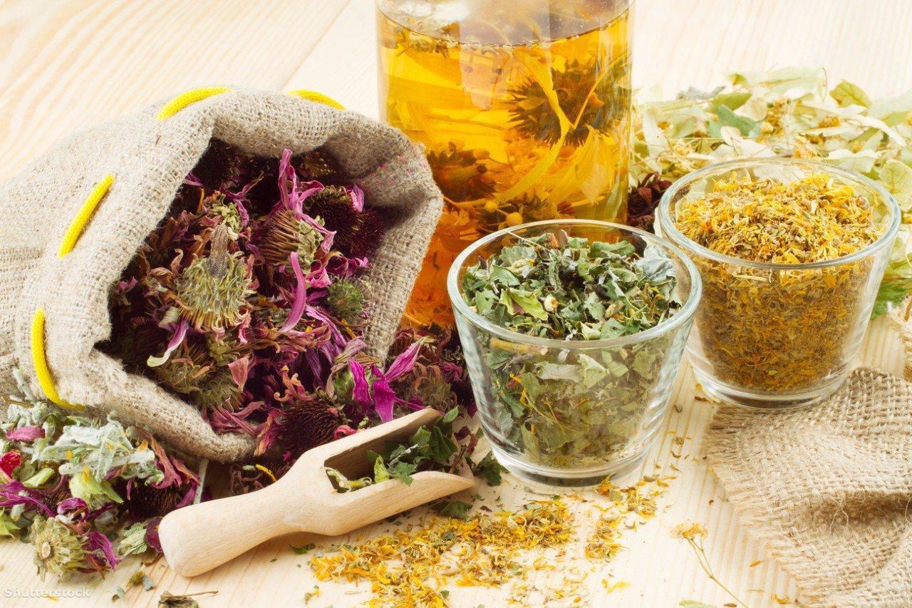 Лечебные травы от простуды, насморка и гриппа
