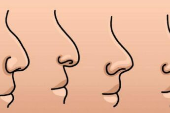 Характер по форме носа