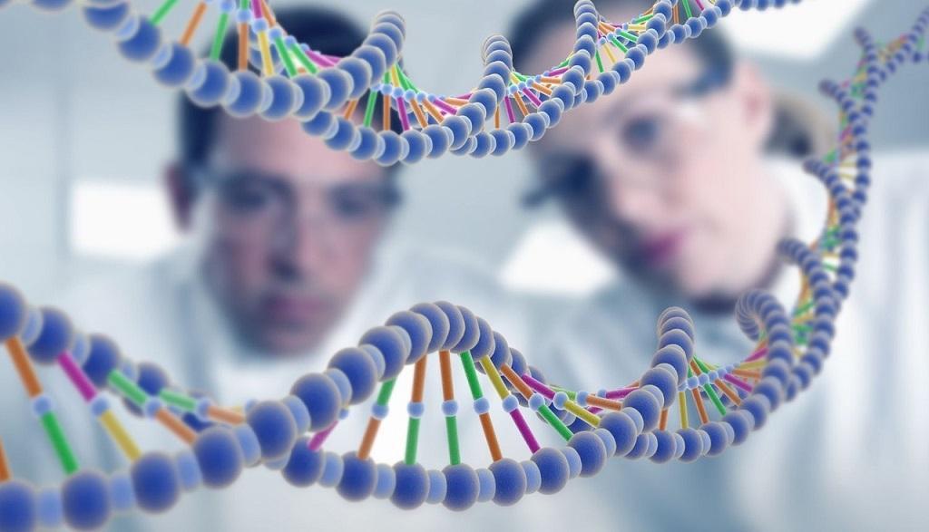 13 неожиданных фактов о генах человека