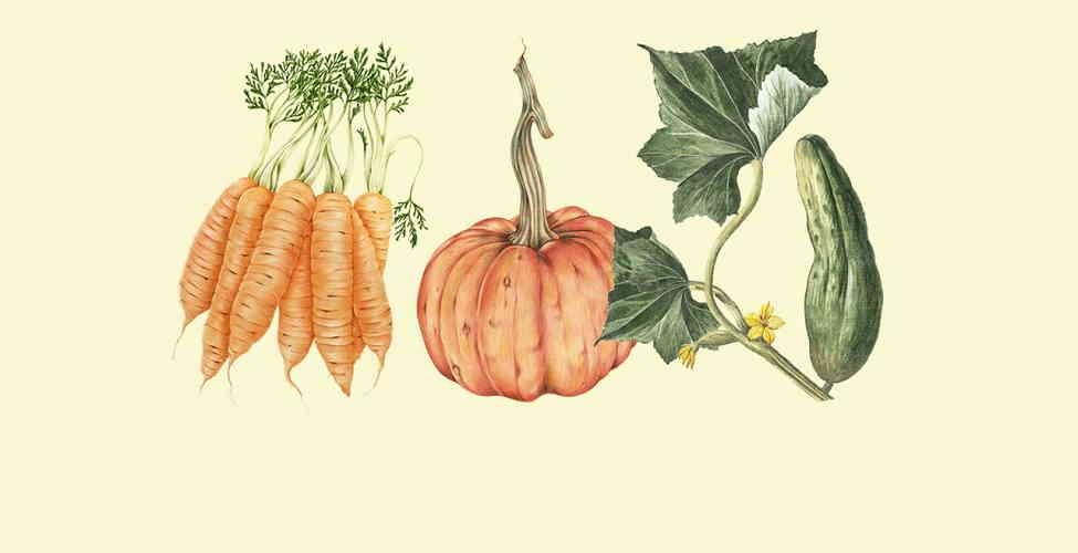 Натуральные домашние средства для лица с фруктами, ягодами и овощами